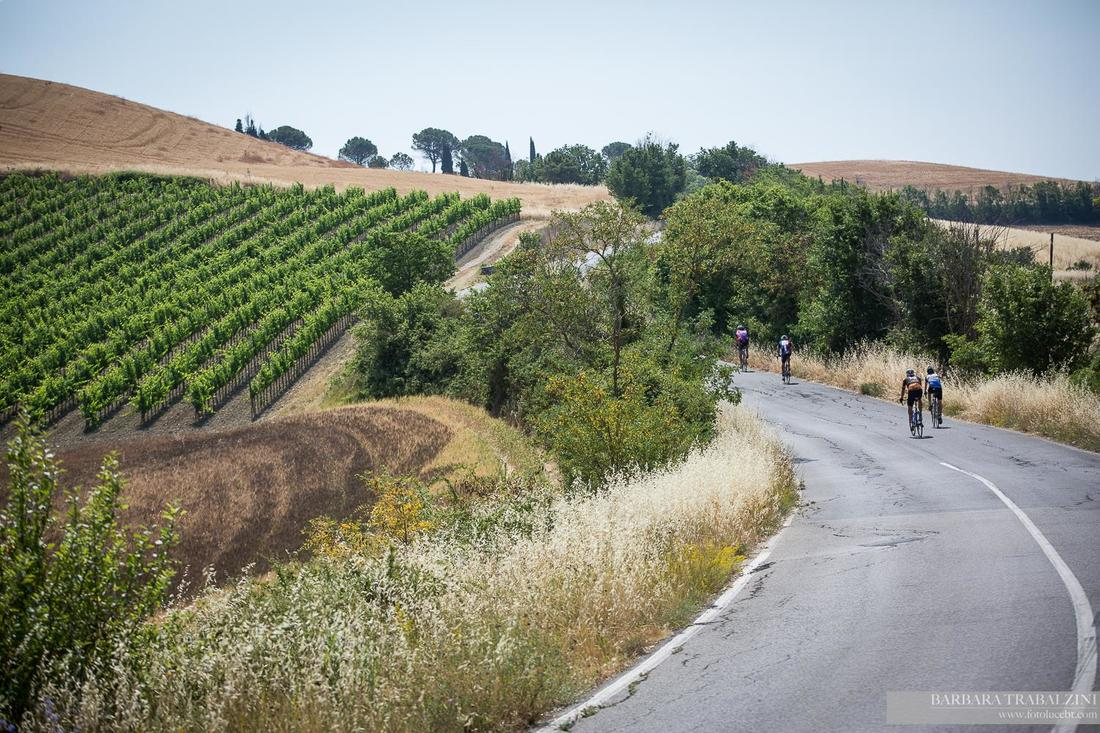 Cyclists riding past a farm in Italy